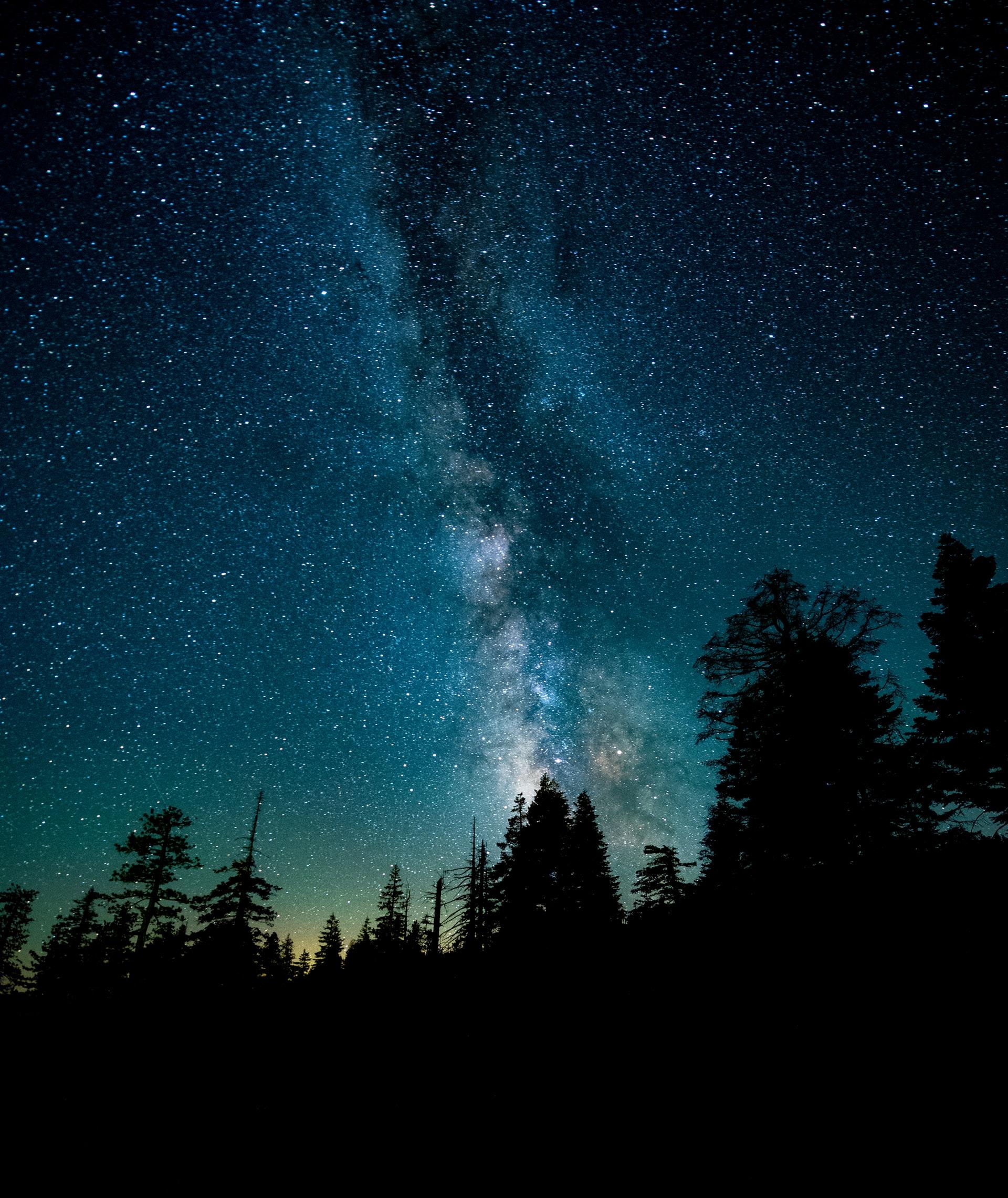 space-sky-tree
